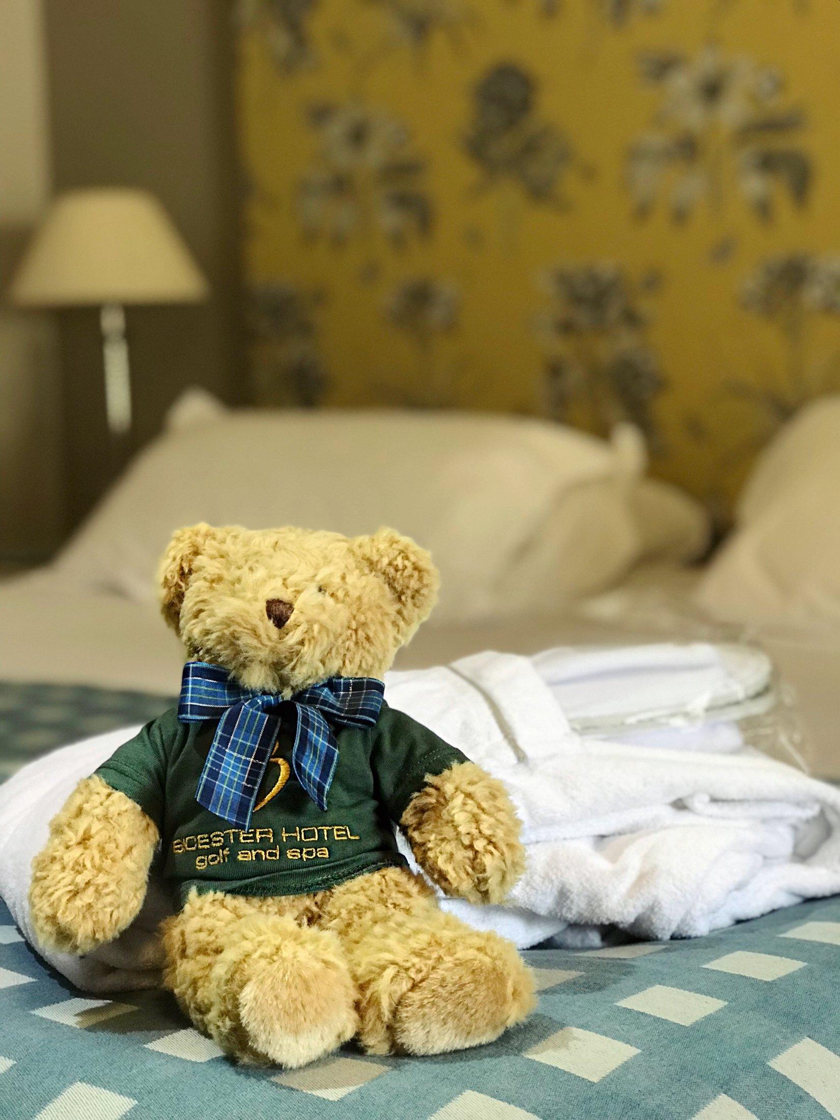 Teddy bear bicester bear, Mr B